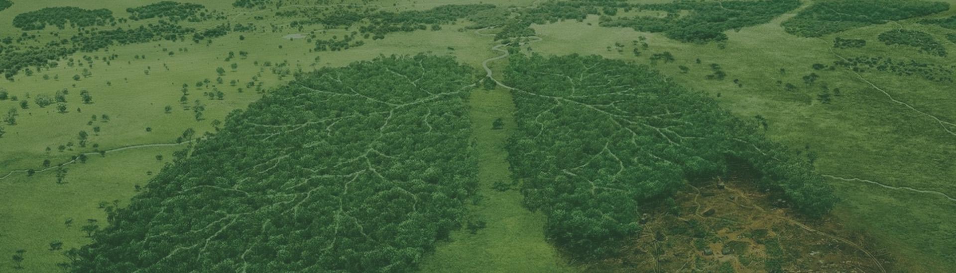 Екологічна Альтернатива