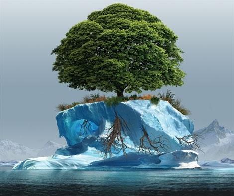 Протидія зміні клімату