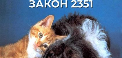 Верховна Рада ухвалила зоозахисний закон № 2351